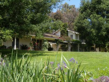 Out and About: Pacific Palisades