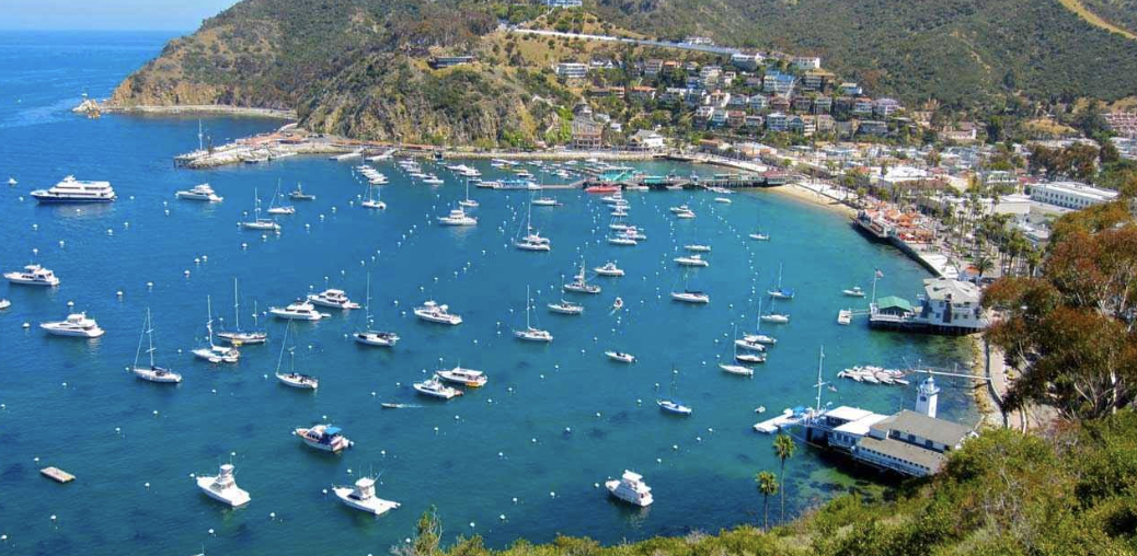 Out And About Catalina Island Rodeo Realty