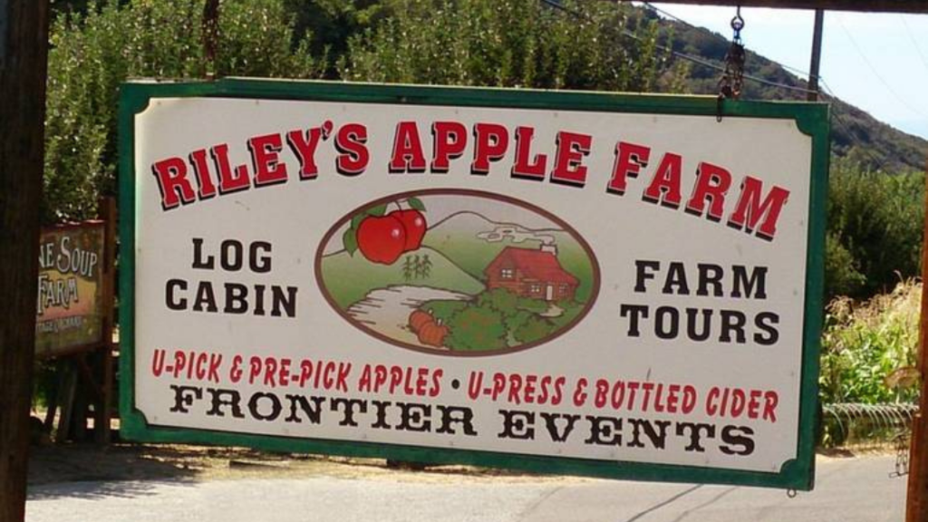 Where to go Apple Picking in SoCal this Fall